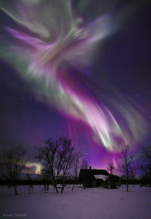 Purple Aurora ...