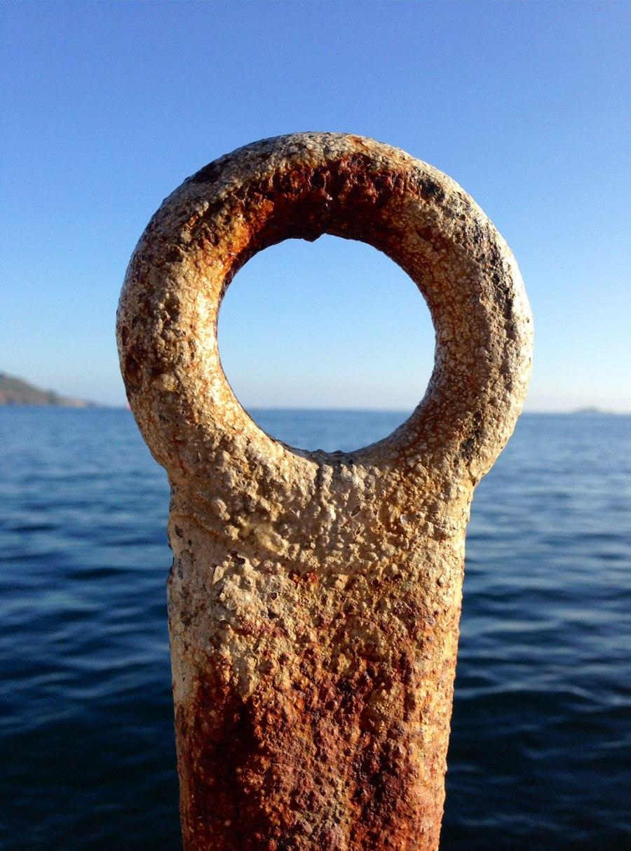 sea_ring